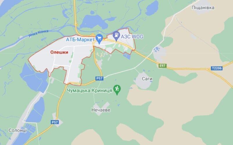 Інцидент трапився в місті Олешки