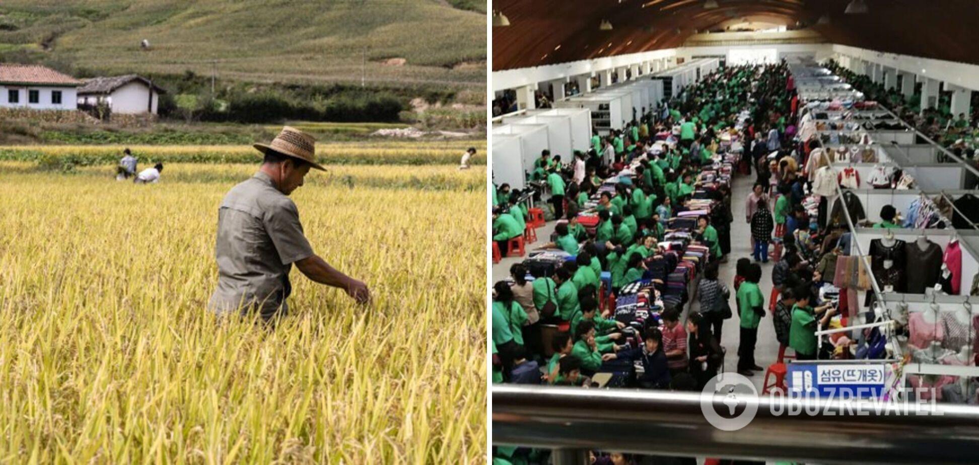 Ким Чен Ын обвинил в спаде экономики природу