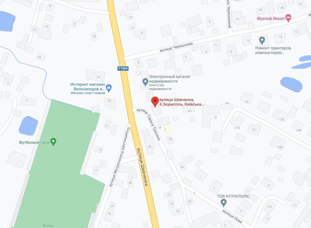 Инцидент произошел на улице Шевченко.