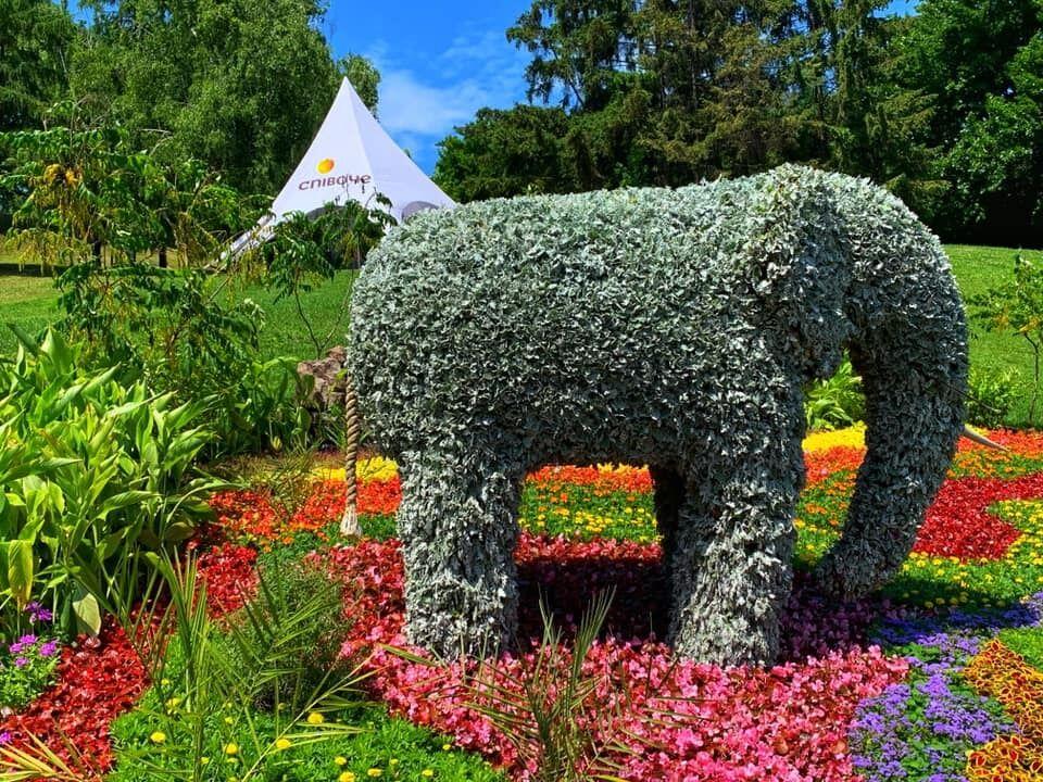В Киеве открылась на Певческом поле открыли уникальную выставку цветочных композиций.
