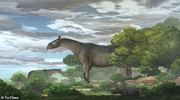 Ученые воссоздали облик предка носорога, обитавшего в Китае 26 млн лет назад. Фото