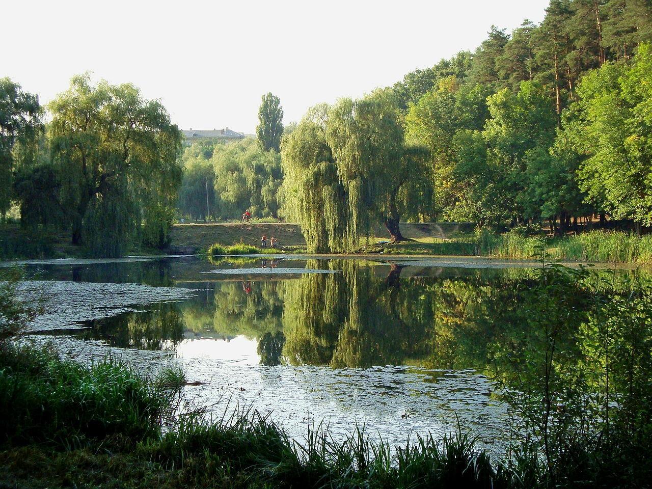 На территории парка есть много озер.