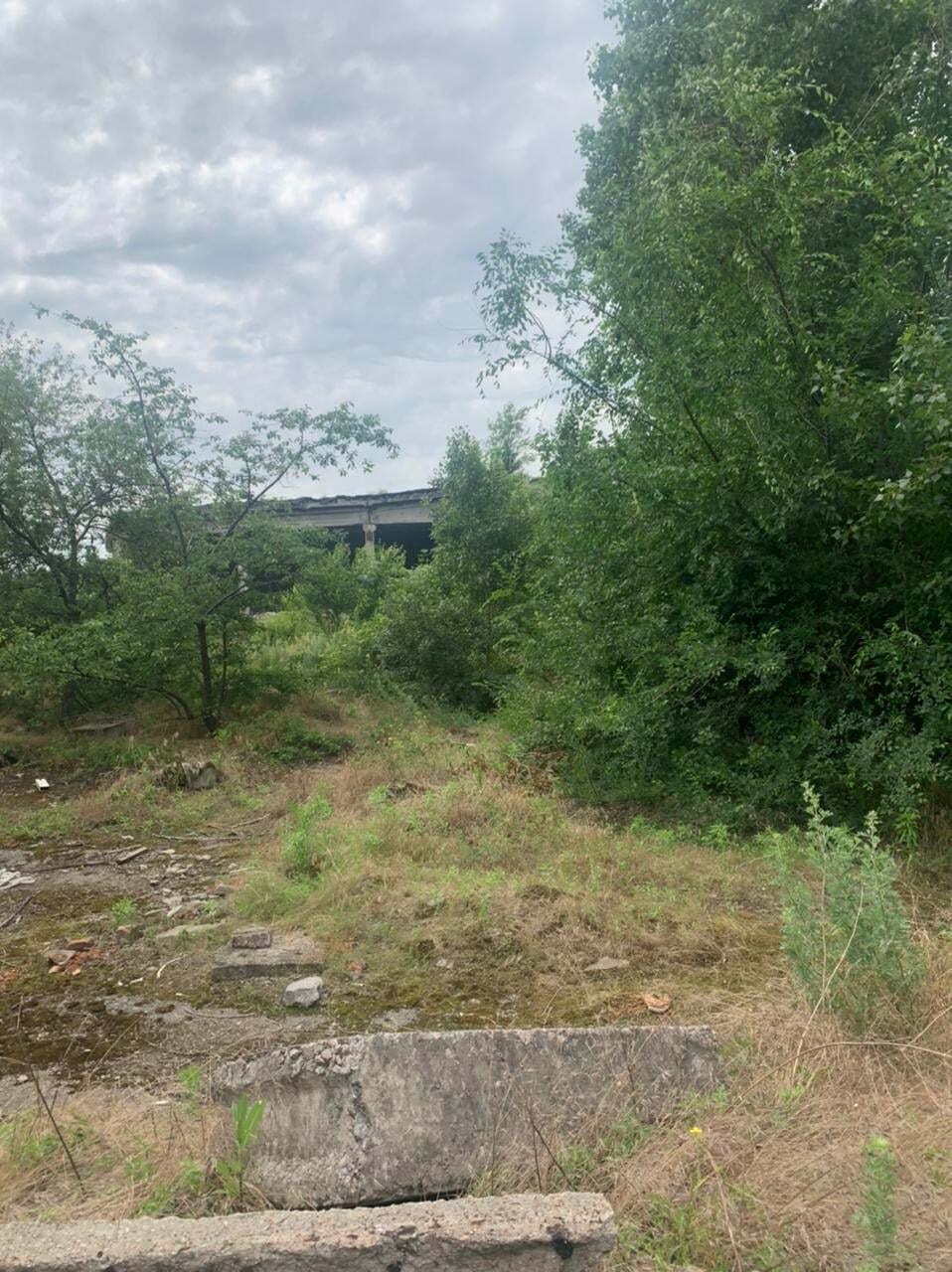 Місце, де було знайдено тіло дівчинки