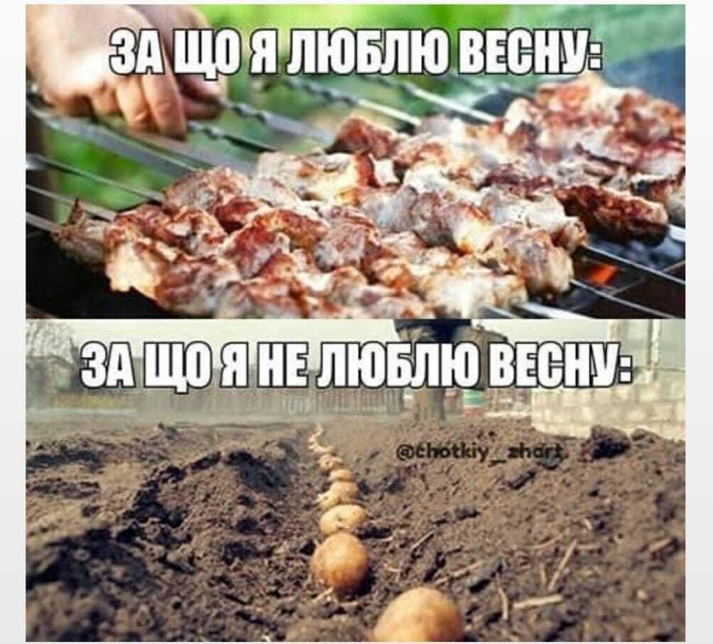 Мем о весне