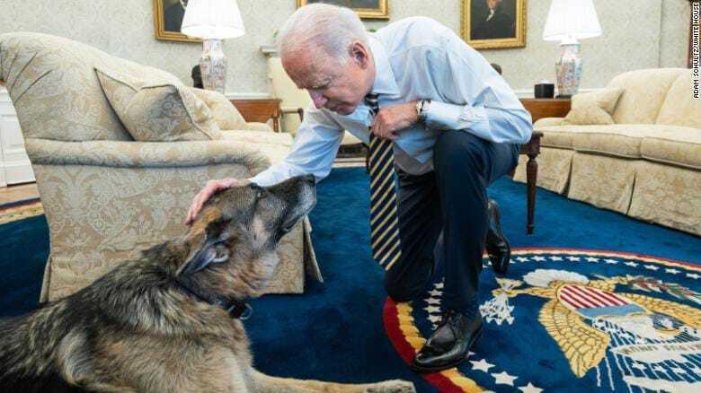 Президент Джо Байден с собакой Чемпом в Белом доме, февраль 2021 года