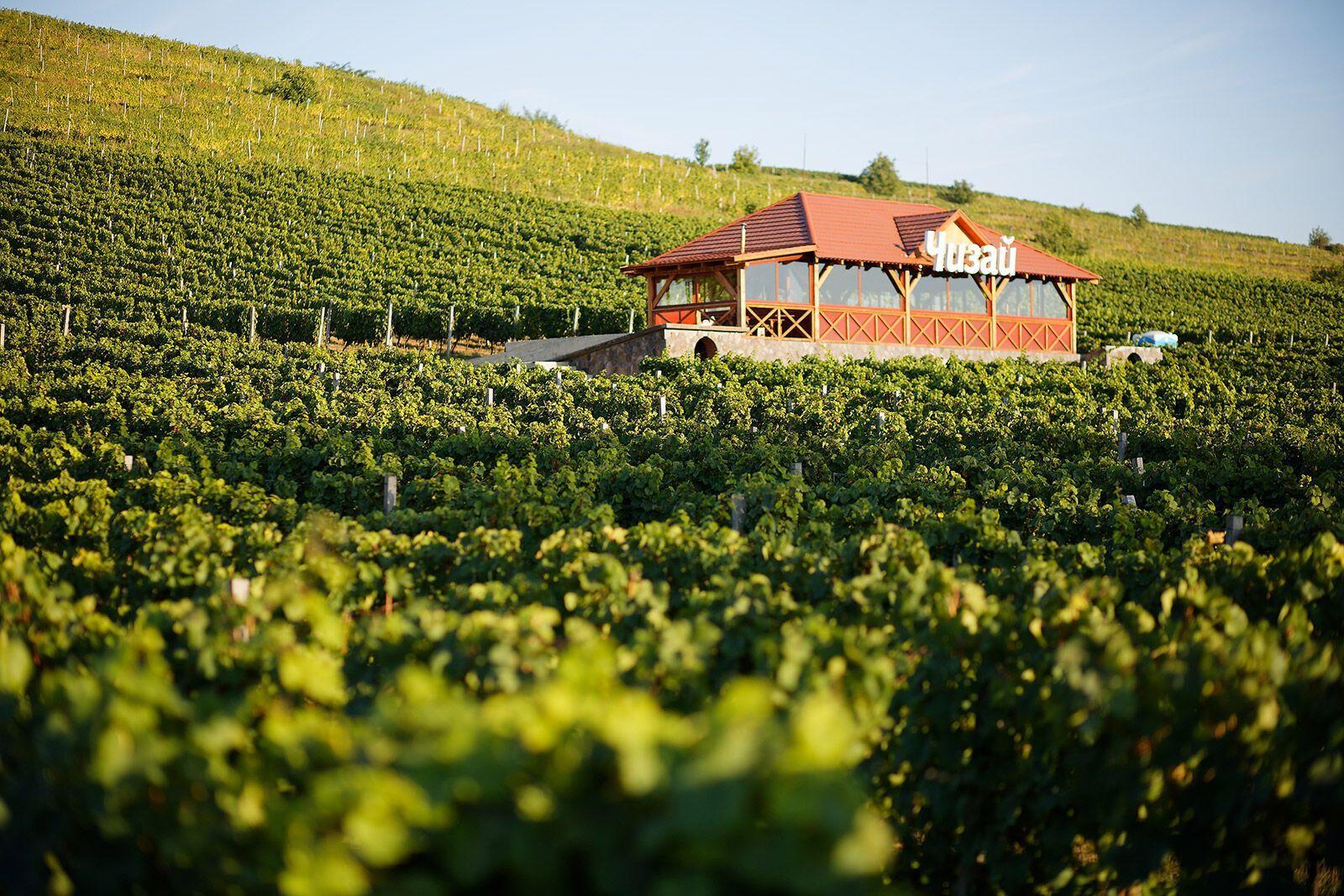 В Берегово стоит посетить винодельню и переночевать в отеле среди виноградников