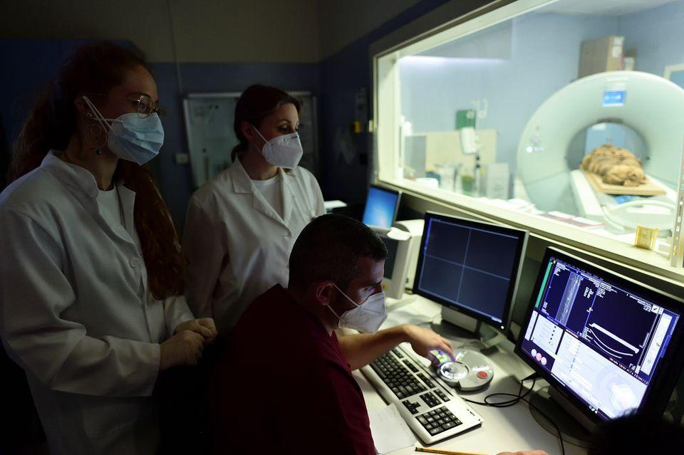 Компьютерную томографию провели в Италии