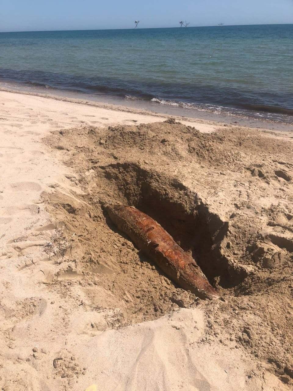 На косі Беляус прямо на пляжах лежать мертві дельфіни