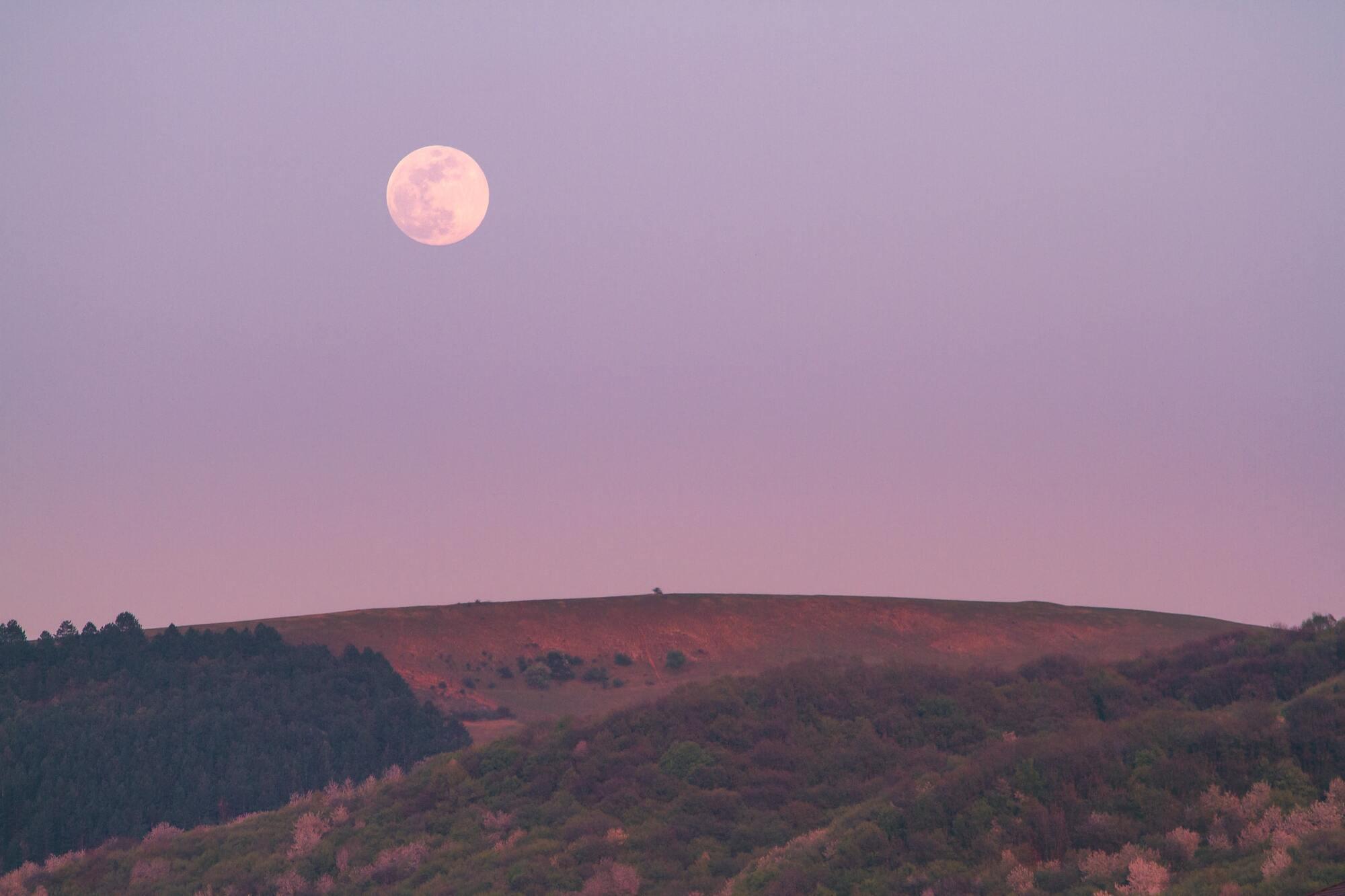 Колір повного місяця не здаватиметься червоним або рожевим, а скоріше золотистим