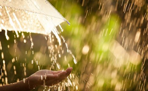 Впереди – дожди