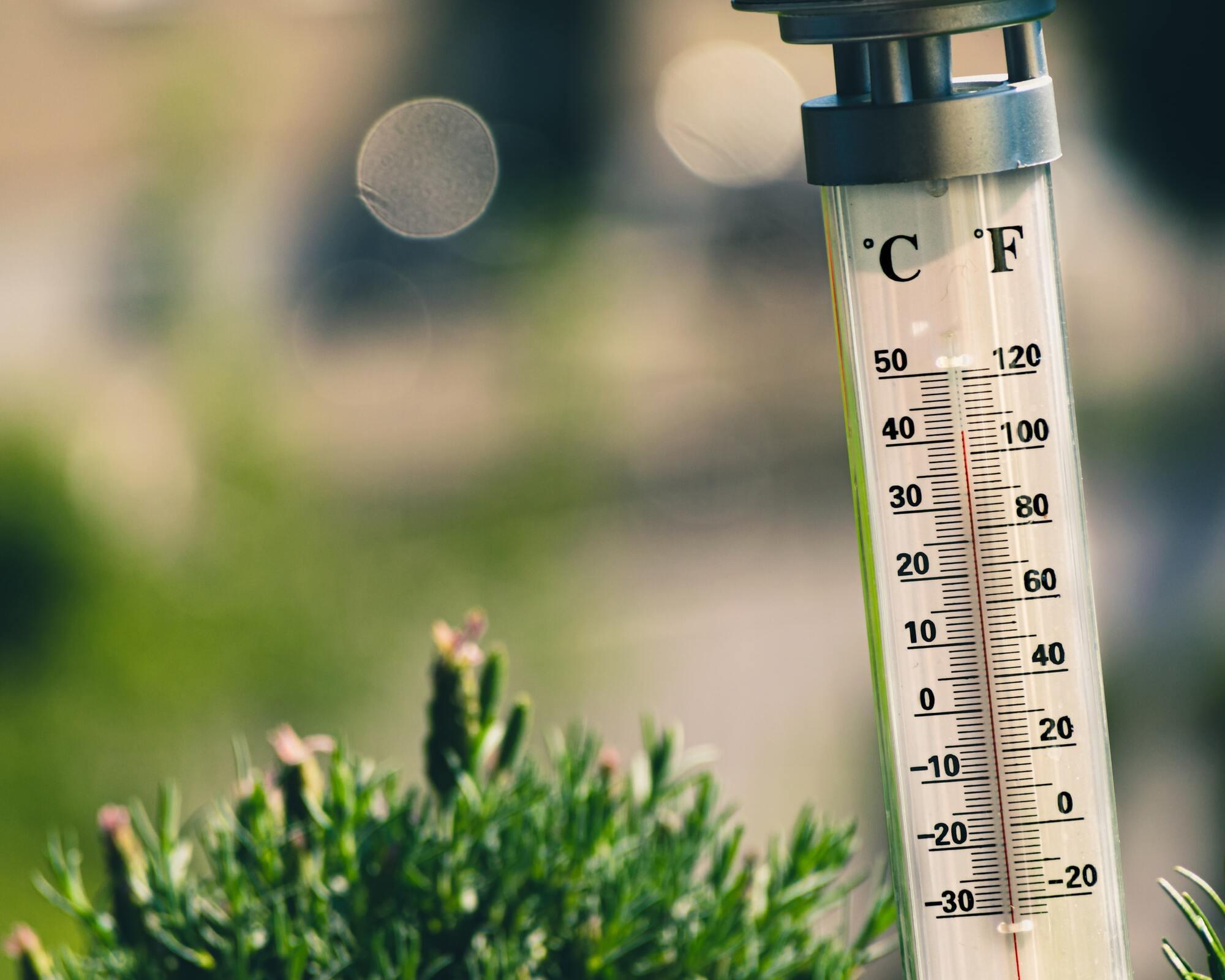 Аномально высокие температуры могут вызывать тепловой удар и тепловое истощение