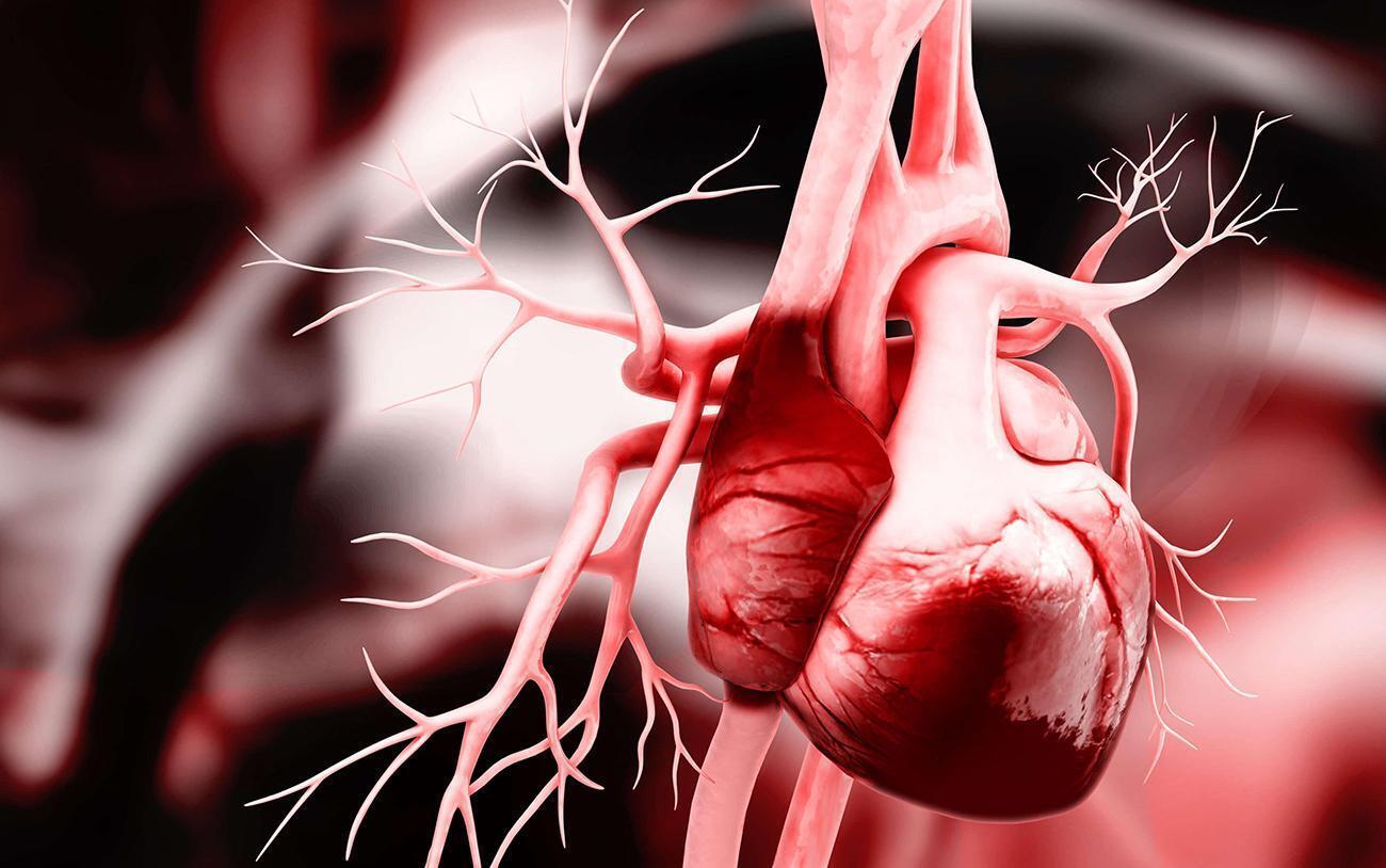 """""""Сердечная профессия"""": как школа Емца помогает спасать безнадежных пациентов"""