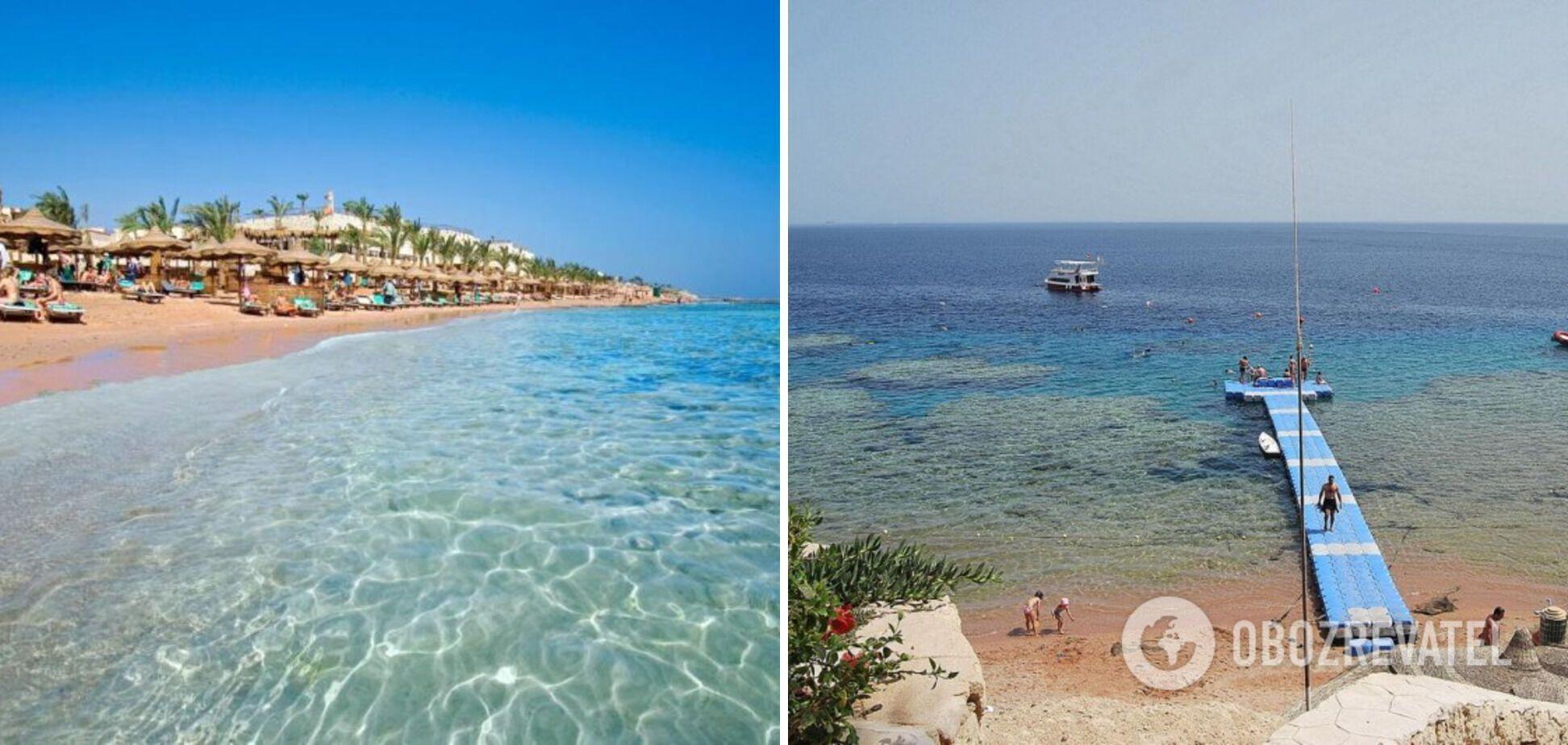 В Красном море кристально чистая вода.