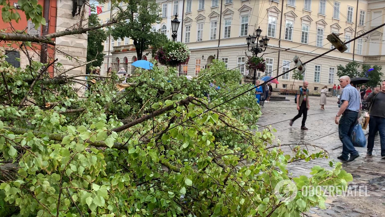 Последствия непогоды во Львове.