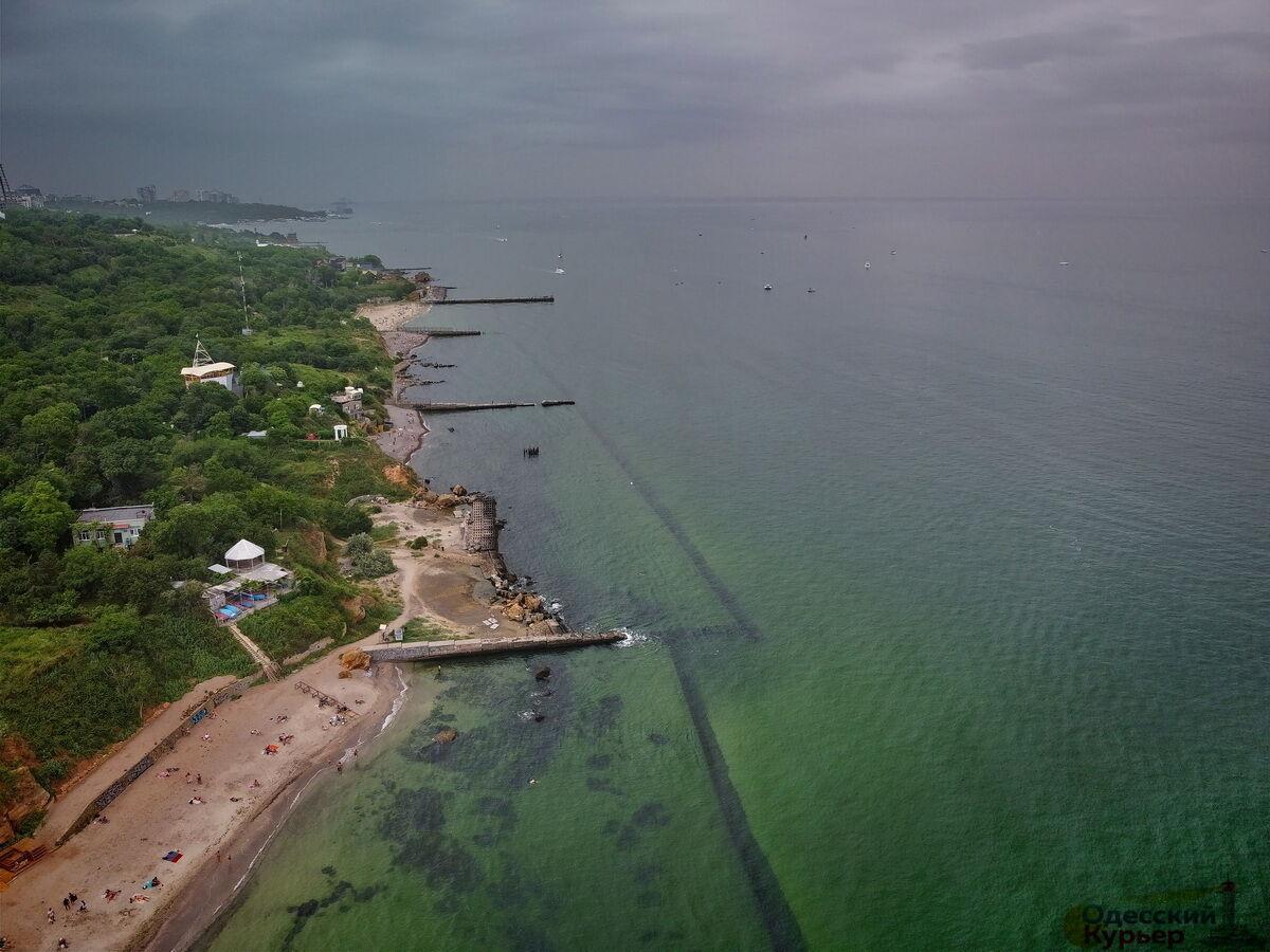 """Черное море в Одессе """"позеленело"""""""