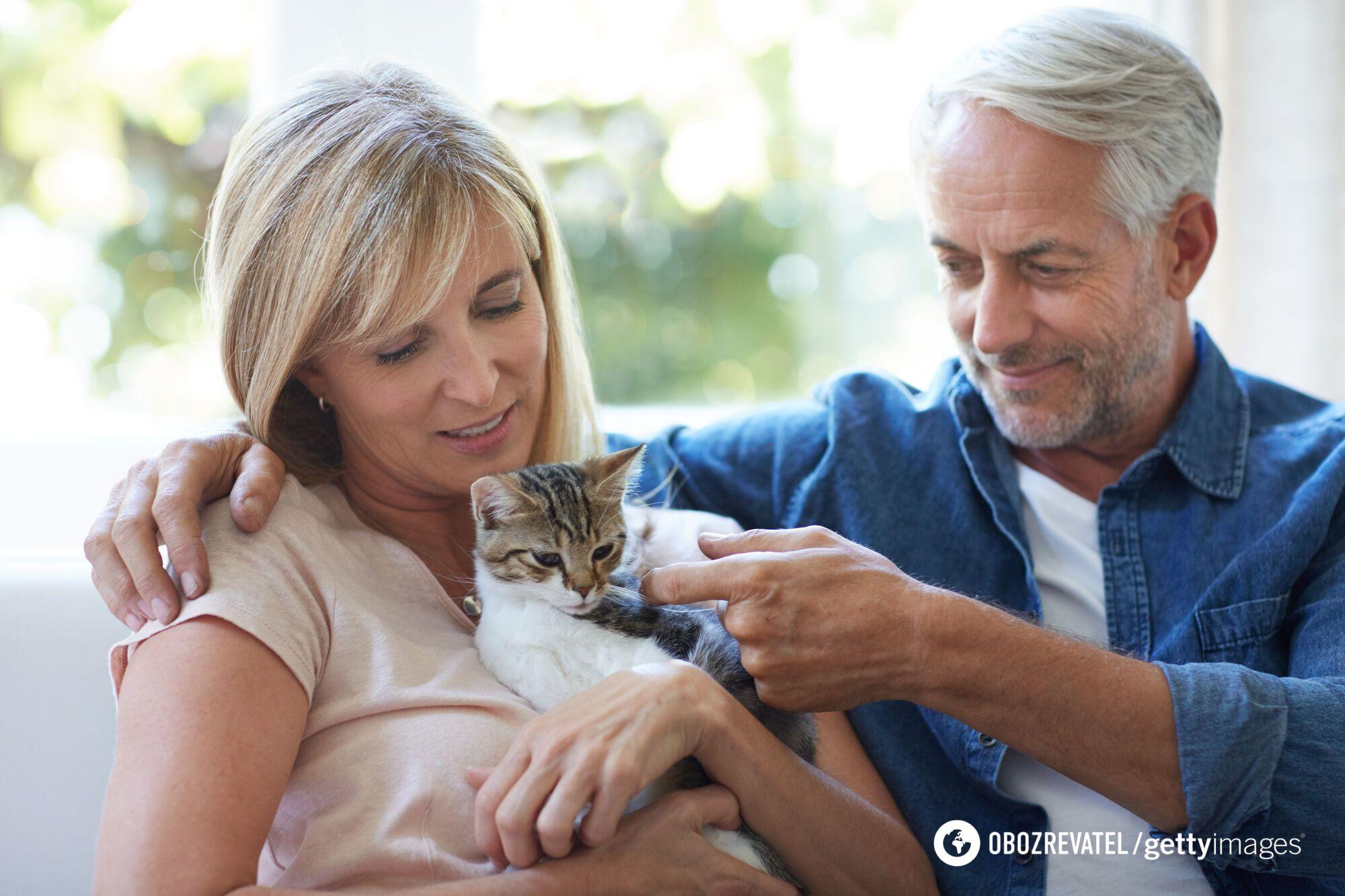 Между кошками и человеком существуют созависимые отношения