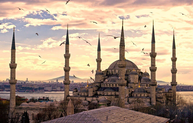 У Туреччині можна орендувати житло самостійно на будь-який смак