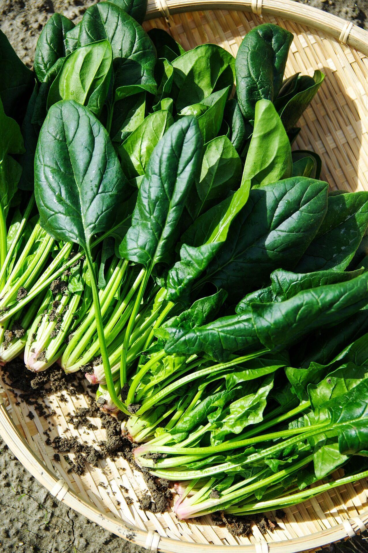 В 100 граммах шпината – 0,0027 грамма железа