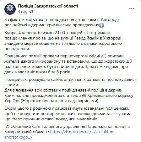 В Ужгороде дети убили котенка