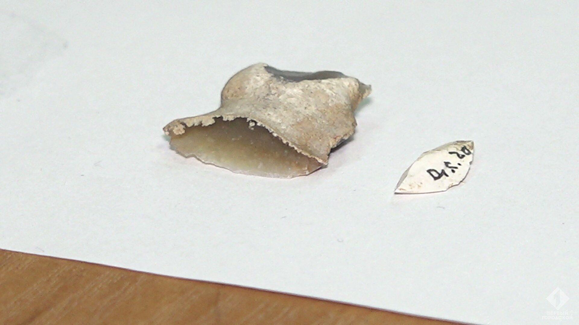 Археологи знайшли артефакти кам'яного віку в Одесі