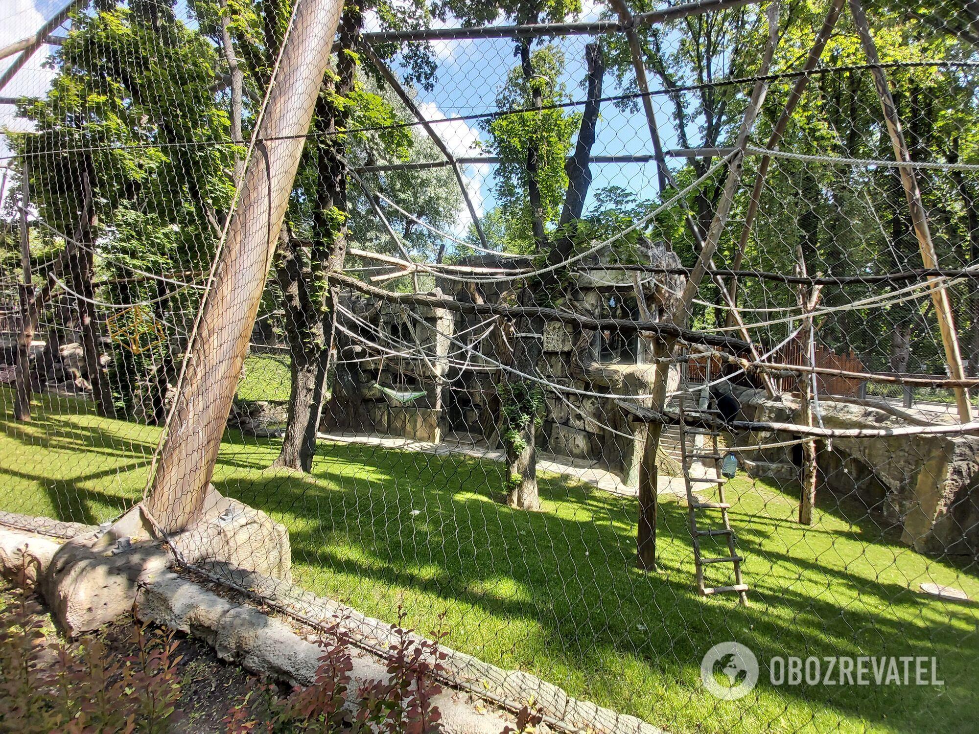 Новый вольер приматов в Киевском зоопарке