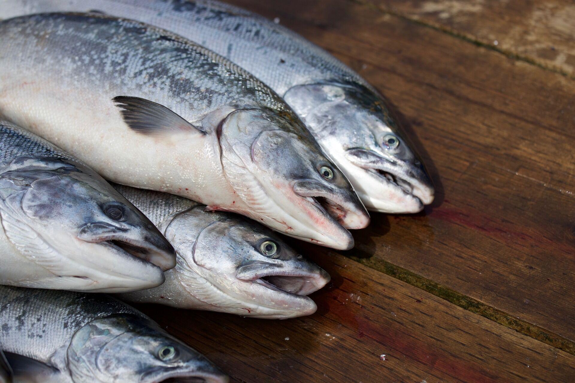 Размороженную рыбу не нужно мыть