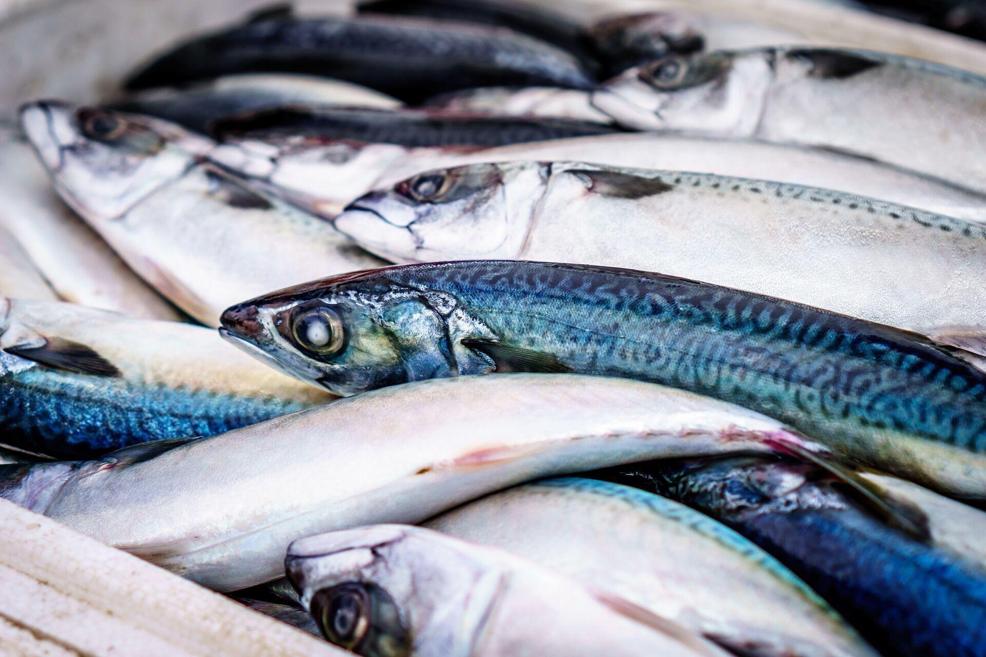 Рыбу не нужно вырывать из упаковки перед разморозкой