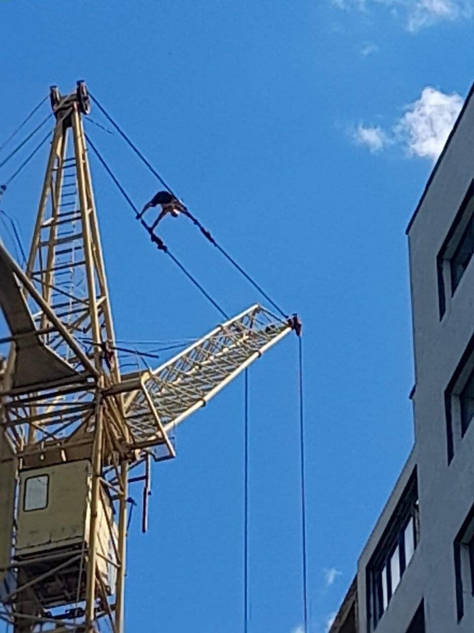 Мужчина залез на башенный кран
