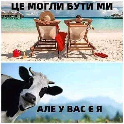 Мем про господарство