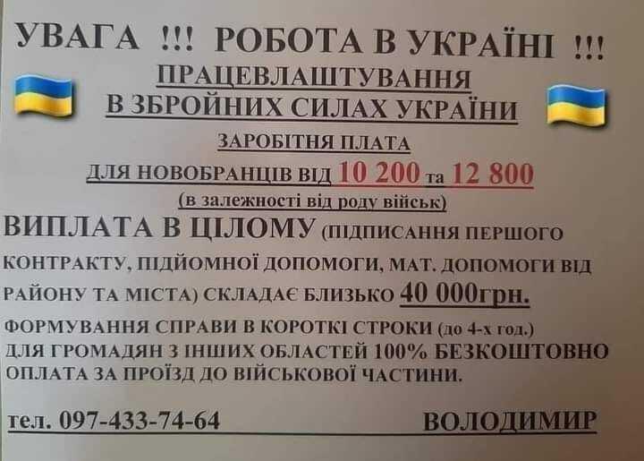 Оголошення, яке знайшов Святослав