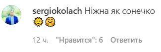 Коментарі в мережі