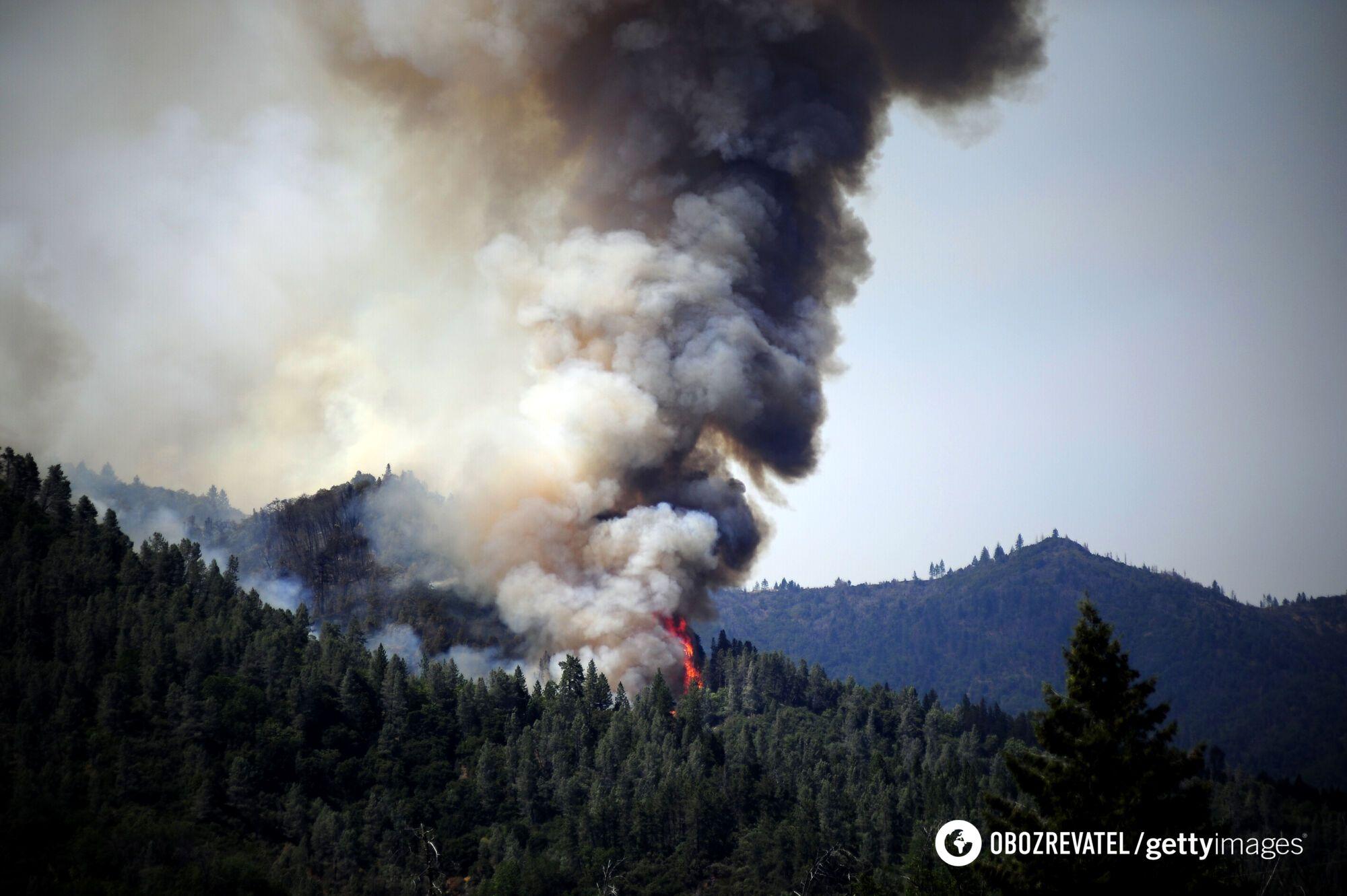 Дым от огня поднялся до небес