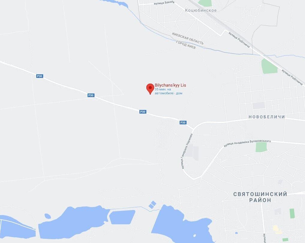 Беличанский лес в Киеве.