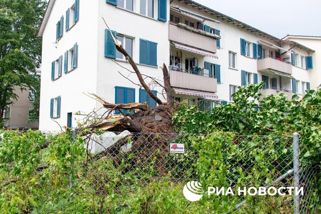 Буря выкорчевывала дерева