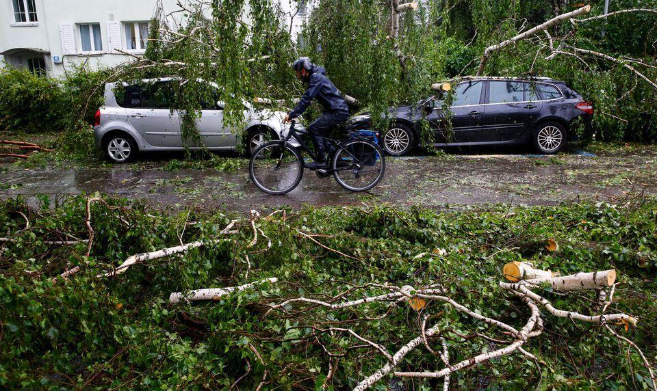Буря валила деревья и громила машины