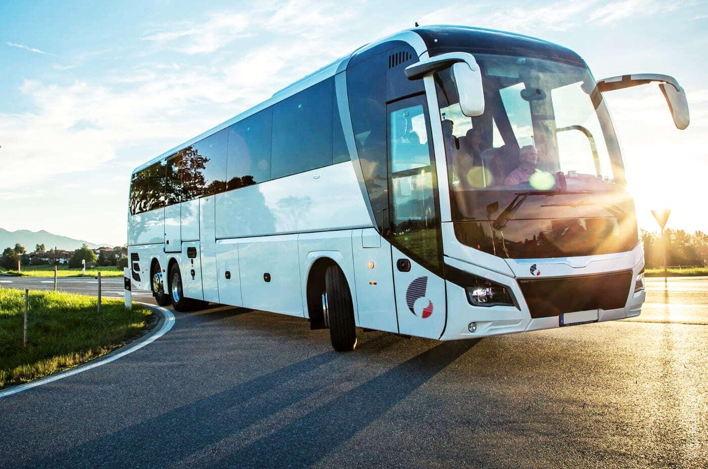 На морські курорти України курсують комфортабельні автобуси