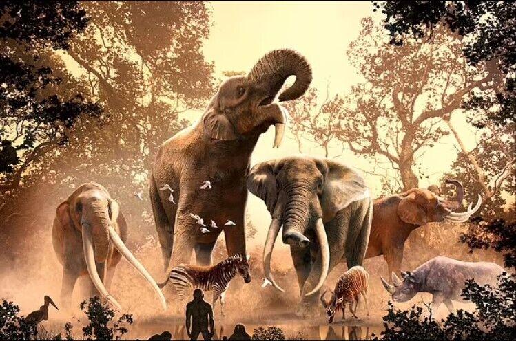 Вже 10 тис. років тому деякі види хоботних таки могли зникнути внаслідок полювання людей