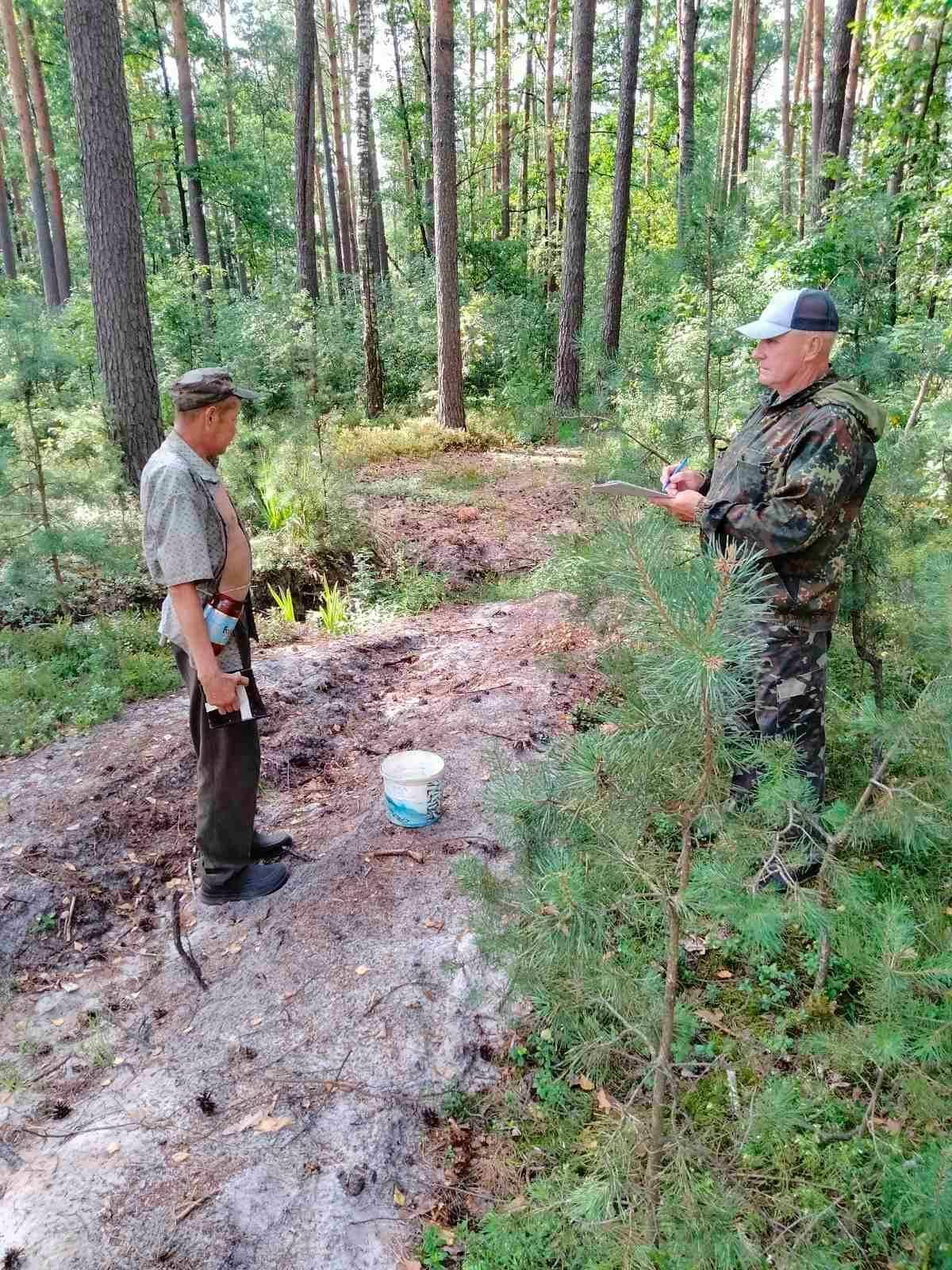 Інспектори перевіряють ліси