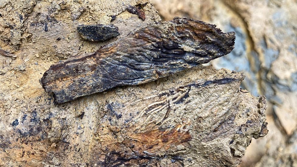 Древнее существо с раскопок