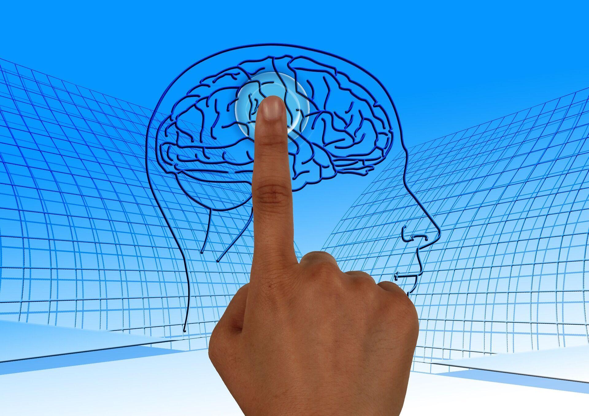 Пам'ять мозку практично необмежена
