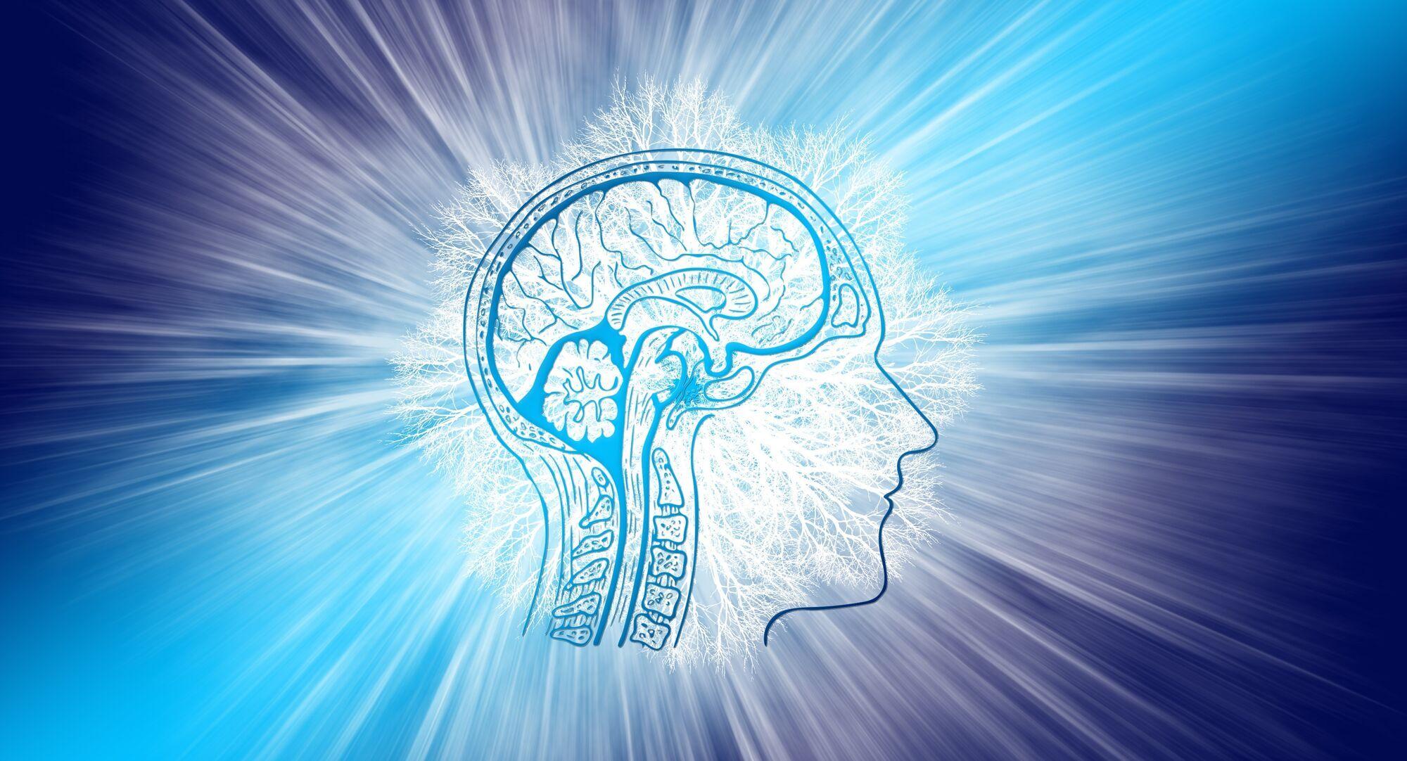 При тривалому недосипі температура мозку зростає