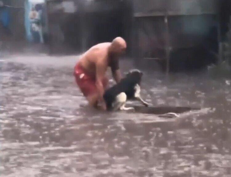 Мужчина босиком бросился помогать животному.
