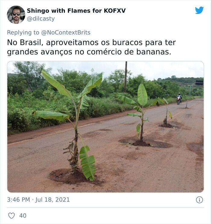 У Бразилії на дорозі посадили банани