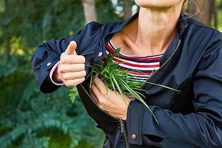 За допомогою трави можна зігрітися в прохолодну погоду