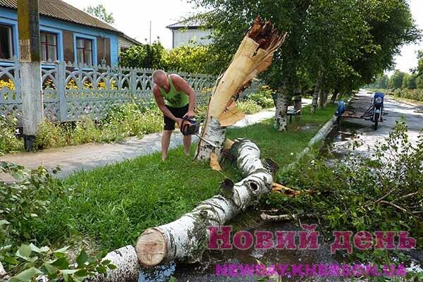 Житель села Каменка распыляет поваленную шквалом березу