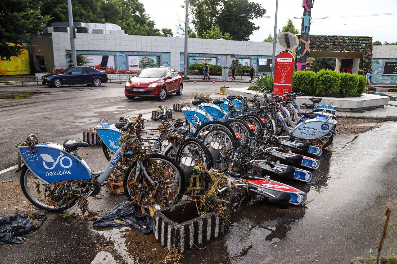 Прокатные велосипеды оказались в иле и водорослях