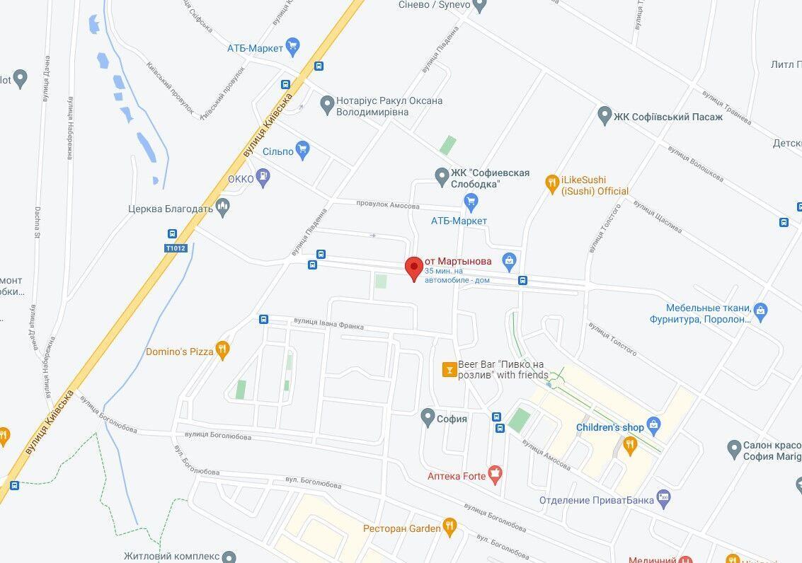 Інцидент стався в селі Софіївська Борщагівка.