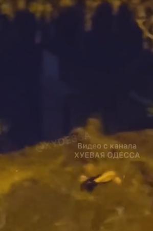 Мужчину уносило в море в районе Аркадии