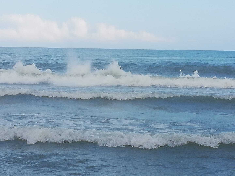 В море нет медуз