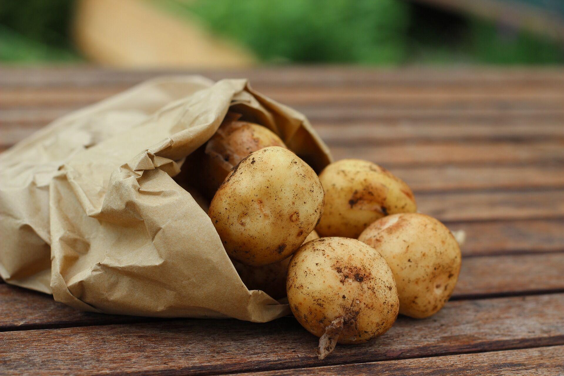 Хинкали можно делать с картофельной начинкой